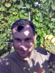 Harvesting for Dr. Bürklin-Wolf - 2007