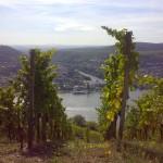 Rheingau, Germany