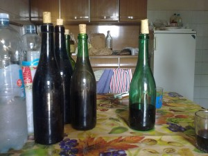 Igino's wonderful spontaneously fermented wines - dry Brachetto on the right