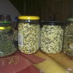 Homemade herbal and flower teas